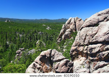 Rock formations scatter the pine forests of Black Hills National Forest in South Dakota - stock photo