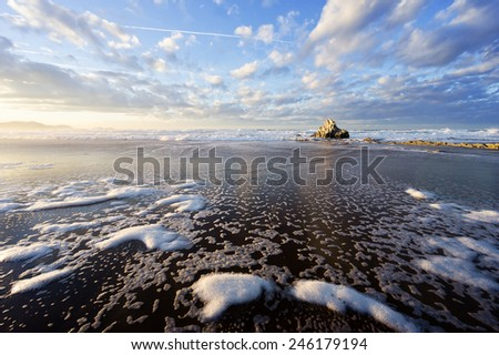 rock in Sopelana beach with foam track on sand - stock photo