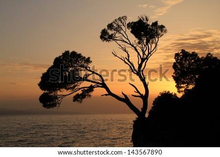 Rock island at sunset in Brela,Croatia - stock photo