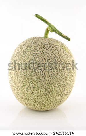 Rock Melon fruit. - stock photo
