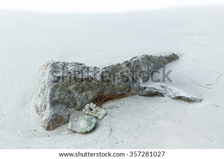 rock on beach-Nature Backgrounds