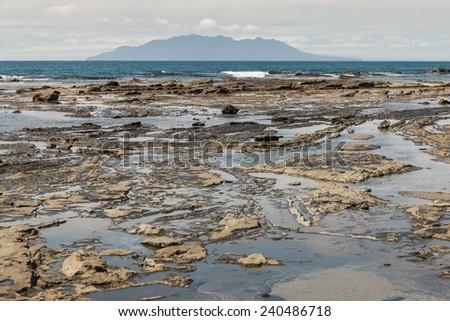 rock pools at Omaha Bay beach in New Zealand - stock photo