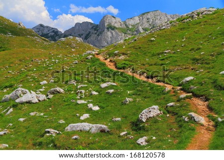 Rock scattered meadow along narrow trail in sunny weather - stock photo