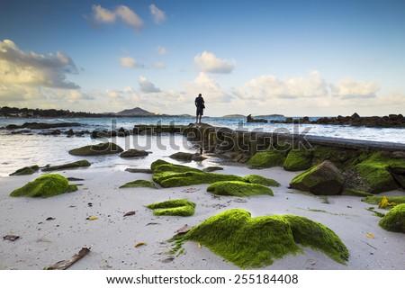 Rock, Sea, Tropical beach at Chaweng Beach, Koh Samui, Thailand - stock photo