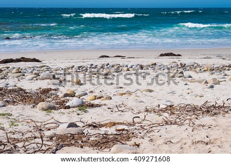 Rocks and Seaweed on the Beach Along the Coast of Northern California - stock photo