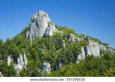 Rocks and trees in Sulov, Slovakia - stock photo