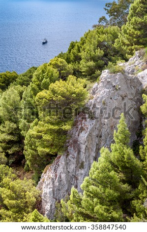 Rocks and vegetation on a cliff of Capri island - Italy - stock photo