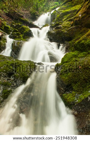 Rocks covered by moss next to a waterfall - stock photo