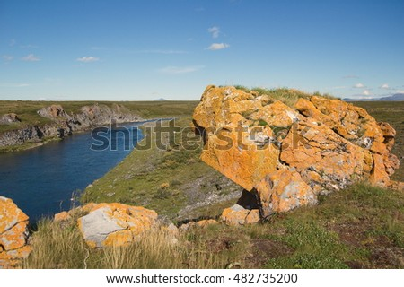 Rocks covered with yellow lichen and mountain river in the tundra in the background in sunny weather. Small Usa river, Polar Urals.