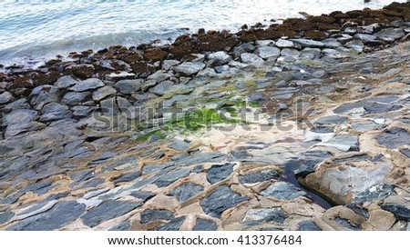 Rocks with red algae at low tide along rocky shore. Red algae are previously submerged in the sea water. A gentle series of wave currents move towards the shore. - stock photo