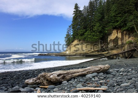 Rocky beach and driftwood on the West Coast Trail located on Vancouver island in British Columbia