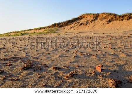 Rocky Beach at Sunrise - stock photo