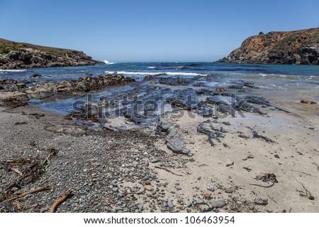 Rocky beach in Salt Point State Park, Sonoma County, California - stock photo