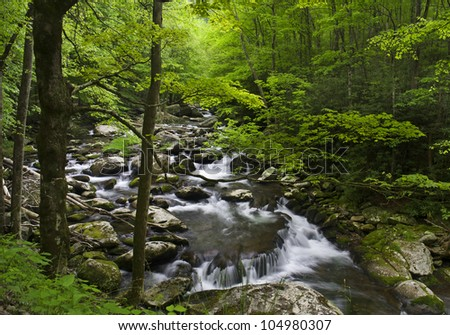 Rocky cascade and waterfall with softly filtered light through green forest in Great Smoky National Park.