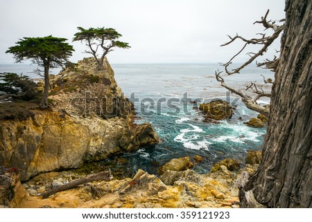 Rocky Cliff and Trees in Carmel Near Pebble Beach.  Carmel, California, USA.