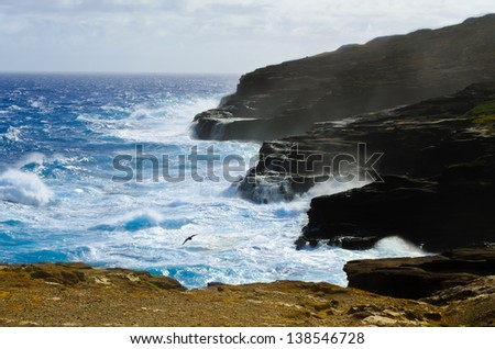 Rocky coast Hawaii