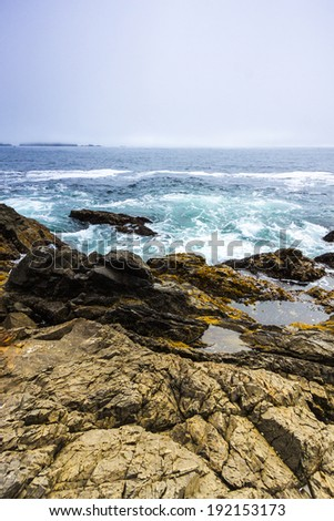 Rocky Coastline of Pacific Ocean where Waves Hit Shore