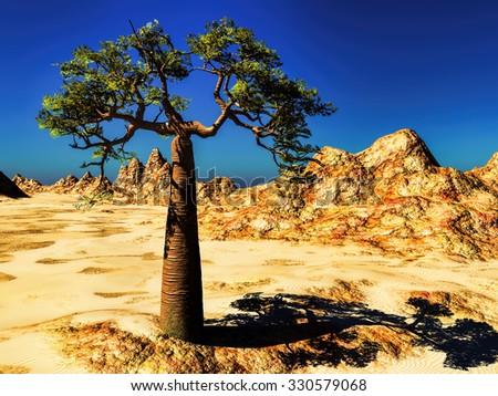 Rocky desert with single tree- baobab - stock photo
