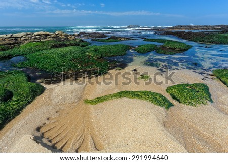 Rocky empty beach from the north of Portugal - stock photo