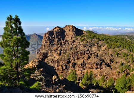 Rocky landscape in the interior of Gran canaria with canarian pine trees, cliffs and bright blue sky background, Canary islands - stock photo