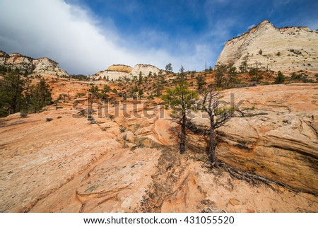 Rocky landscape in Zion national park - stock photo