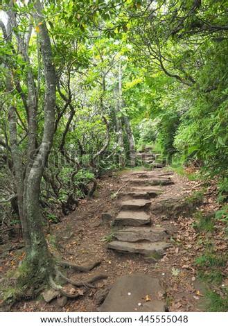 Rocky Mount Pisgah Hiking Trail off the Blue Ridge Parkway - stock photo