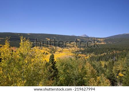 Rocky Mountain Fall Aspen Scene - stock photo