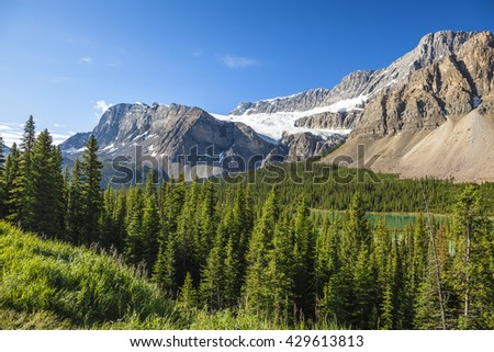 Rocky mountains and coniferous forests landscape. Banff national park. Alberta, Canada