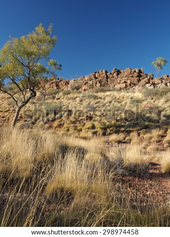 Rocky outcrop at the Dolomite walk near Ellery Creek Big Hole in the McDonnell Ranges, Alice Springs, Australia, July 2015 - stock photo