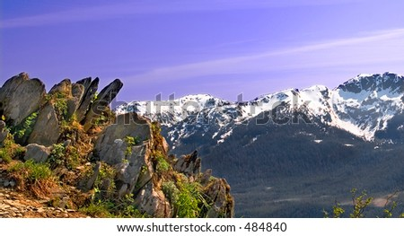 Rocky outcropping on Mt. Roberts above Juneau, Alaska. - stock photo