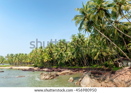 Rocky tropical beach in southern India surrounded by palm trees Rocky tropical beach in southern India surrounded by palm trees