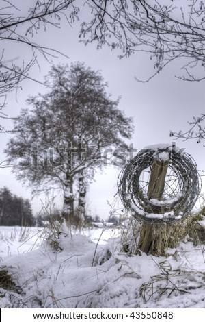 roll of barb wire covered with snow with a tree in the background
