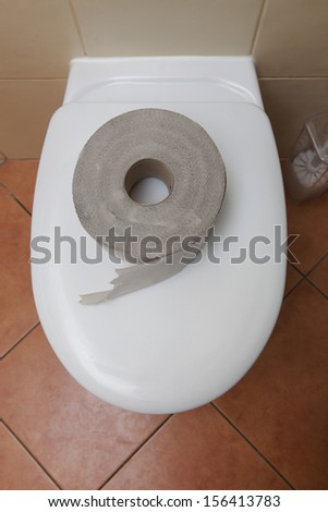Roll of bathroom tissue. Toilet paper on a toilet bowl.