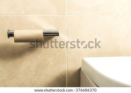 Roll of toilet paper is over - stock photo