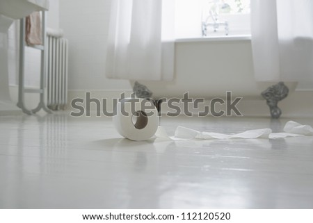 Roll of toilet paper on bathroom floor - stock photo