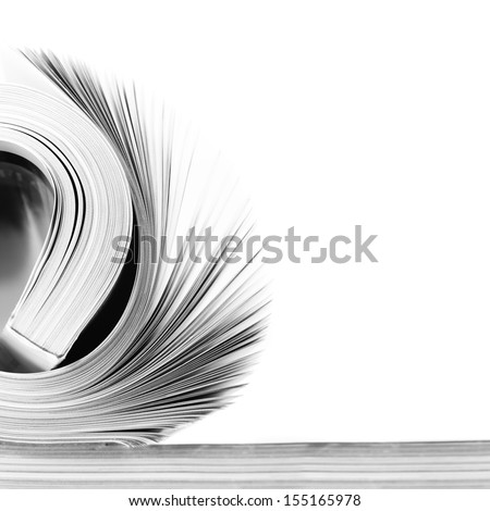 Rolled magazine on white background. B&W image. - stock photo