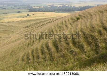 Rolling countryside with grassy hillside showing soil creep at Morgans Hill near Calne. Wiltshire. England. With heat haze.  - stock photo