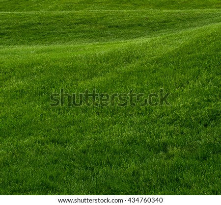 Rolling Hill of Green Grass Square background image