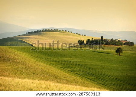 Rolling hills in summer. Pienza, Tuscany, Italy