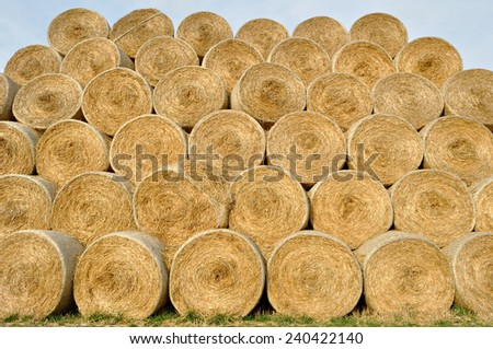 rolls of straw - stock photo