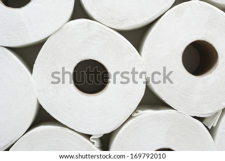 rolls of toilet paper - stock photo