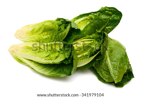 romaine lettuce on white background