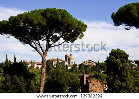Roman Forum , Rom, Italy - stock photo