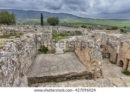 Roman mosaics in ruins of  Volubilis, Morocco - stock photo