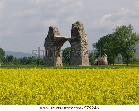 roman triumphal arch and rapeseed field