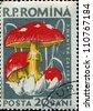 ROMANIA - CIRCA 1958: A stamp printed in Romania  show Caesar's mushroom - Amanita caesarea, circa 1958 - stock photo