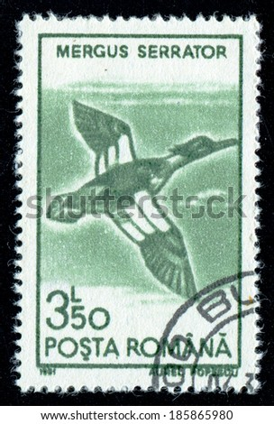 ROMANIA - CIRCA 1991: A stamp printed in the Romania, shows a Red-breasted Merganser (Mergus serrator), circa 1991