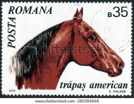 "ROMANIA - CIRCA 1970: a stamp printed in the Romania shows a series of images ""Horse Breeds"", circa 1970  - stock photo"