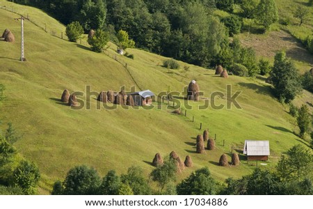 Romanian rural landscape with many hayricks on a green slope.