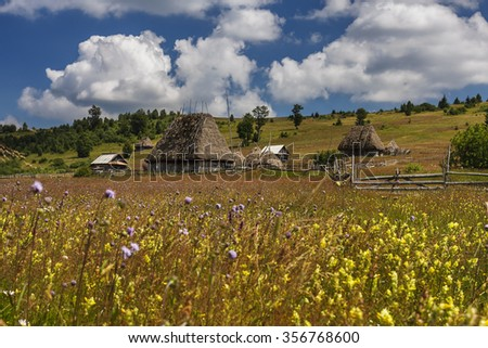 Romanian traditional village with old barn or shack with straw roof on a meadow - stock photo